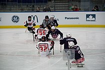 2010ParalympicsUnitedStatesVsJapanIceSledgeHockey.jpg