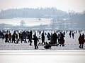 2012 'Seegfrörni' - Pfäffikersee - Pfäffikon 2012-02-12 13-46-34 (SX230).JPG