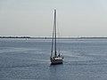 201406060 Ketelmeer bij Schokkerhaven.jpg