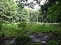 20140812020DR Röhrsdorf (Dohna) Röhrsdorfer Park Pfaffenteich.jpg