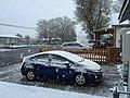 2015-05-07 06 03 38 A late spring heavy wet snowfall at 730 South 9th Street in Elko, Nevada.jpg