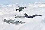 2015.2 공군 소링 이글 훈련 Soaring Eagle of ROK AirForce (16711215225).jpg