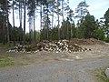 2019-05-22 Oulun hautausmaa 62.jpg