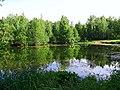 2170. Lake Sobach'e in the park Sosnovka.jpg