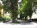 2583 - Innsbruck.JPG