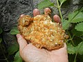 4336Cuisine foods of Bulacan 12.jpg