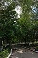 68-258-5010 Скаржинецький парк, алея.jpg