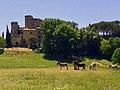 84160 Lourmarin, France - panoramio (3).jpg