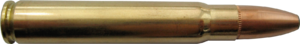 9.3×62mm - Image: 9.3x 62mm Norma Oryx 15g(232gr) cartridge