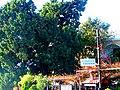 A@a near kathikas village paphos cy. - panoramio (3).jpg
