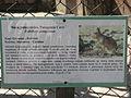 A Silesian Zoological Garden 10.JPG