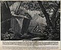 A fenced-in gorge in a forest set up as a trap; one wolf is Wellcome V0020964.jpg