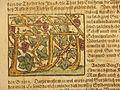 A grape arbor (1600).jpg