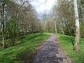 A quiet footpath in Parc Menai, Bangor - geograph.org.uk - 2355027.jpg