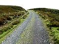 Above Lady Green, Farndale - geograph.org.uk - 895179.jpg
