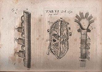 Philip Verheyen - Illustration of critique of Corporis humani anatomia... published in Acta Eruditorum, 1693