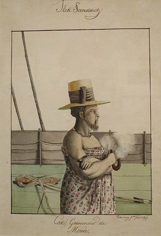 Adrien Taunay the Younger - Image: Adrien Taunay the Younger, 'Governor Cox of Maui', 1819, ink & watercolor over graphite