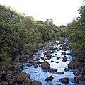 Afon Elan near Elan Village - geograph.org.uk - 412920.jpg