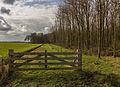 Afrastering om natuurgebied. Locatie, natuurgebied Delleboersterheide – Catspoele 04.jpg
