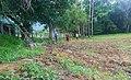 Agricultura -2.Guayameo, Gro.jpg