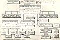 AlberoGenealogico.jpg