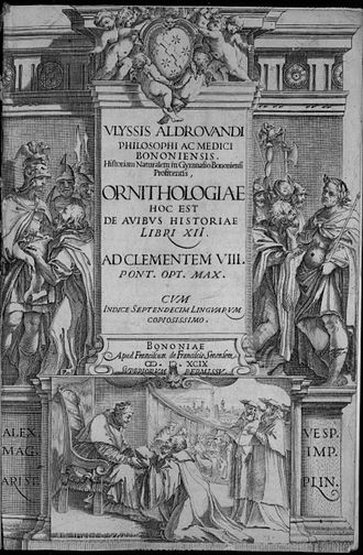 Ornithology - Cover of Ulisse Aldrovandi's Ornithology, 1599