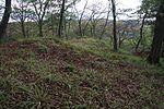 Allerburg (Dautphetal) (017).JPG