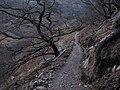 Allt Coire Sgoireadail path, Kinloch Hourn - geograph.org.uk - 655237.jpg
