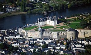 Château d'Amboise - The château seen from the south