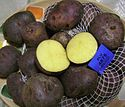 Andean black potato 2.JPG