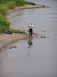 Angler.jpg