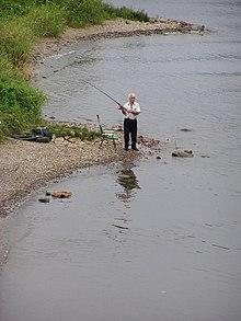 d9c0115c2db57e Angeln (Fischfang) – Wikipedia