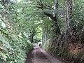 Approaching Talvan - geograph.org.uk - 530834.jpg