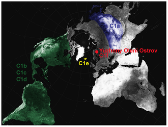Haplogroup C (mtDNA) - Approximate geographical distribution of the C1 sub-clades.