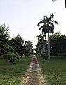 Arab Sarai at the end with its garden Delhi.jpg