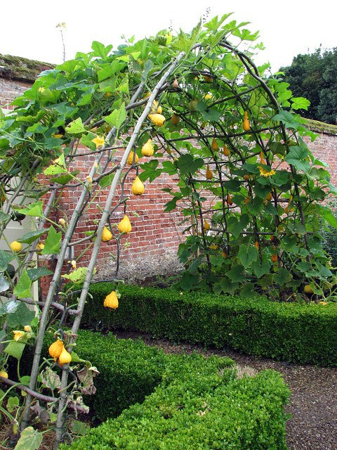 Arch at entrance to walled kitchen garden - geograph.org.uk - 935467