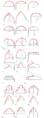 Arch types overview.png