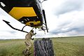 Army Reserves Underslung Load Training with Squirrel Helicopter MOD 45156918.jpg