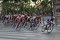 Arrivée 21e étape Tour France 2019 Paris 105.jpg