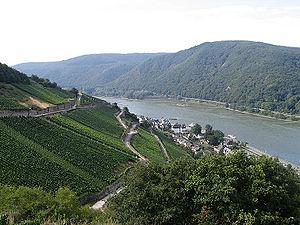 Rheingau - Image: Assmannshausen Hoellenberg