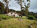 Attikan estate3.jpg