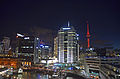 Auckland Waterfront - Night.jpg