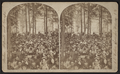 Audience in auditorium, at Chautauqua, by Walker, L. E., 1826-1916.png