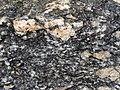 Augen gneiss (Mt. Harrison, Cassia County, Idaho, USA).jpg
