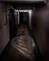 Auschwitz I, april 2014, photo 8.jpg