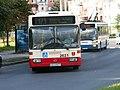 Autobus.linii.171.przystanek.Kameliowa.2621-01.JPG