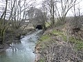 Avenue Washlands - River Rother passes through Tunnel - geograph.org.uk - 676425.jpg