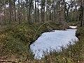 Bärenlöcher im März 2 - panoramio.jpg