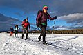 Backcountry campers ski along the road in Lower Geyser Basin (399dd179-6a32-4d45-a4b0-8be42663adcd).jpg