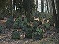 Bad Rappenau - Heinsheim - Jüdischer Friedhof - Grabsteine im Nordosten 1.jpg